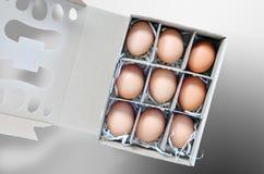 Caixa de ovos Imagem de Stock