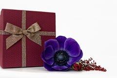 Caixa de presente com flores em um fundo branco Imagem de Stock Royalty Free