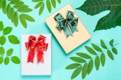 Caixa de presente com a folha no fundo verde Imagem de Stock Royalty Free