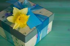 Caixa de presente com narciso amarelo Imagens de Stock Royalty Free