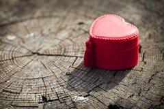 Caixa de presente da forma do coração no tronco de árvore Fotos de Stock Royalty Free