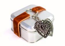 Caixa de presente do metal Foto de Stock
