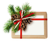 Caixa de presente do Natal com curva da fita, galho do abeto, cones e A.A. fotografia de stock royalty free