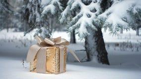 Caixa de presente em uma neve video estoque