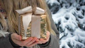 Caixa de presente em uma neve vídeos de arquivo