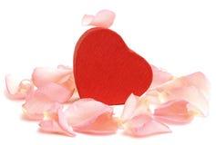 Caixa de presente Heart-shaped vermelha com pétalas de Rosa imagens de stock royalty free