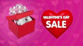 Caixa de presente vermelha com pares de coelhos, coração vermelho grande de voo vídeos de arquivo