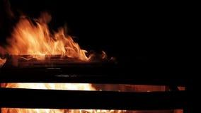Caixa de queimadura, fogo real isolado no fundo preto vídeos de arquivo