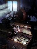 Caixa de tesouro escondida Fotografia de Stock