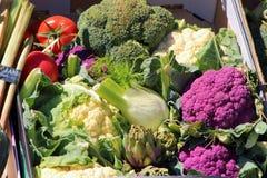 Caixa de vegetais variados Fotografia de Stock