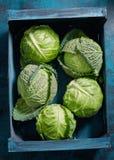 Caixa de vegetais verdes orgânicos frescos Imagens de Stock