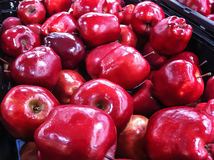 Caixa de vermelho - maçãs deliciosas Fotos de Stock Royalty Free