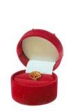 Caixa decorativa com pendente Fotografia de Stock Royalty Free