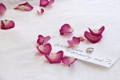 Caixa do anel Imagem de Stock Royalty Free