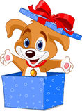 Caixa do filhote de cachorro Imagens de Stock