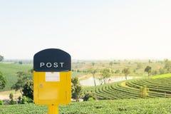 Caixa postal amarela no campo do chá com céu Fotografia de Stock Royalty Free