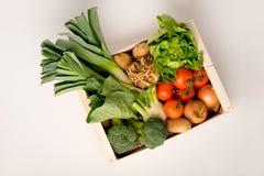 Caixa vegetal em um fundo branco Foto de Stock