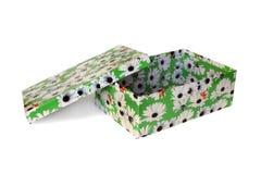 Caixa verde agradável isolada Fotografia de Stock Royalty Free