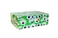 A caixa verde agradável isolou-se Foto de Stock Royalty Free