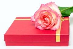 A caixa vermelha e o rosa aumentaram em um fundo branco Um presente para o amado foto de stock royalty free