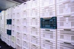 Caixas brancas plásticas Recipientes para o transporte do produ do alimento imagem de stock