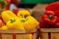 Caixas com pimentas coloridas no mercado Fotografia de Stock