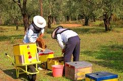 Caixas da abelha e depositários 2 da abelha foto de stock royalty free