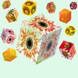 Caixas da flor Fotos de Stock Royalty Free