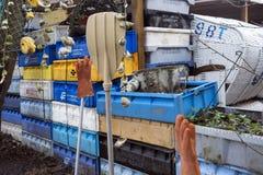 Caixas da pesca, boias e outros objetos marítimos na frente da barra velha Blaue Maus na ilha norte Amrum do Frisian Imagens de Stock Royalty Free