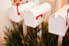 Caixas de letra no jardim Fotos de Stock Royalty Free