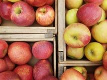 Caixas de maçãs diretamente acima foto de stock