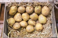 Caixas de madeira tradicionais do fazendeiro com batatas frescas Imagens de Stock