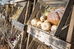 Caixas de madeira tradicionais do fazendeiro com friuts e vegetais Foto de Stock Royalty Free
