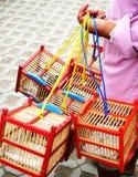 Caixas de pássaro Fotografia de Stock