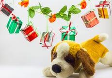 Caixas de presente do Natal com o urso de peluche no fundo branco Fotos de Stock Royalty Free