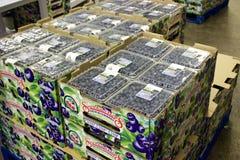 Caixas dos mirtilos do Columbia Britânica prontos para ser enviado Foto de Stock