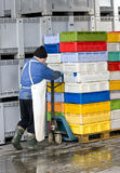 Caixas moventes na loja fria Foto de Stock