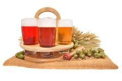Cajón de la cerveza con los vidrios de cerveza Foto de archivo libre de regalías