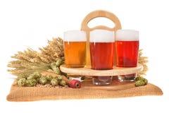 Cajón de la cerveza con los vidrios de cerveza Imagen de archivo