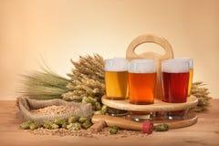 Cajón de la cerveza con los vidrios de cerveza Fotografía de archivo