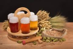 Cajón de la cerveza con los vidrios de cerveza Imagen de archivo libre de regalías