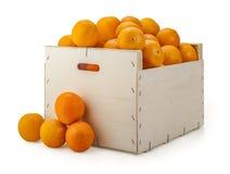 Cajón de las naranjas Fotos de archivo