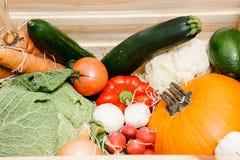 Caja con las verduras Todavía vida de vehículos Imagen de archivo libre de regalías