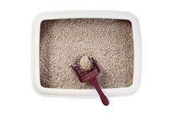 Caja de arena para gatos Fotos de archivo libres de regalías