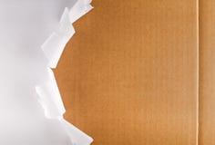 Caja de cartón de empaquetado rasgada del papel que revela Imagen de archivo libre de regalías