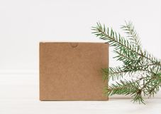 Caja de cartón, rama de árbol de navidad Fondo blanco Imágenes de archivo libres de regalías