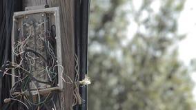 Caja de cordones rotos de la telefonía en un polo de madera