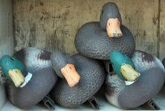 Caja de Duck Decoys imagenes de archivo
