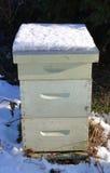 Caja de la colmena en invierno Fotos de archivo libres de regalías