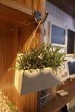 Caja de la flor de Zakka Fotos de archivo libres de regalías